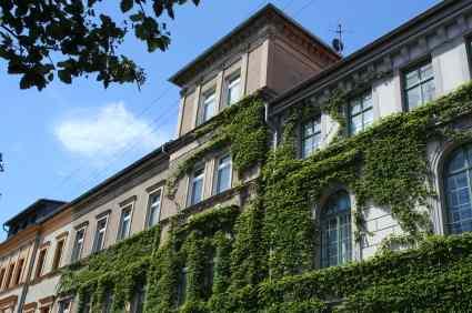 Studieren in Weimar